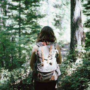 เดินป่า